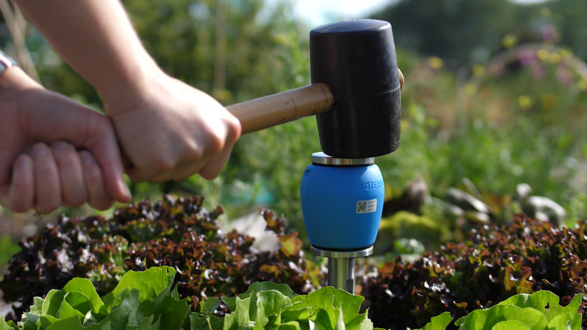 Soil Moisture Meter is a Reliable and Effective Tool.