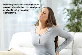 Pain Relief with the anti-inflammatory drug Palmitoylethamolamide
